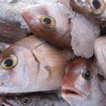 En qué debes fijarte para saber si está el pescado fresco