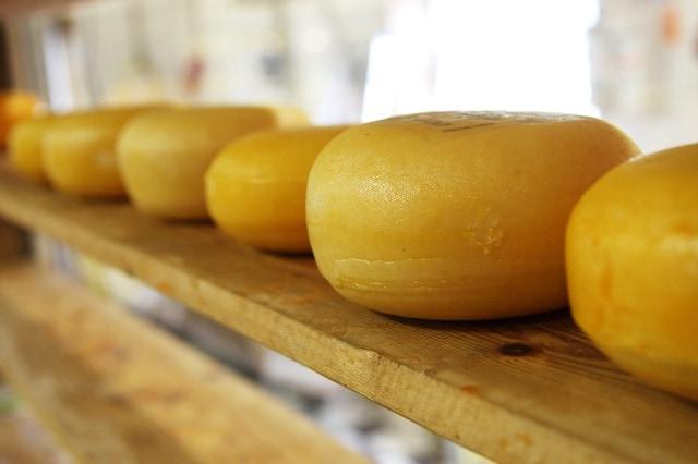 Conoce el queso Vidiago