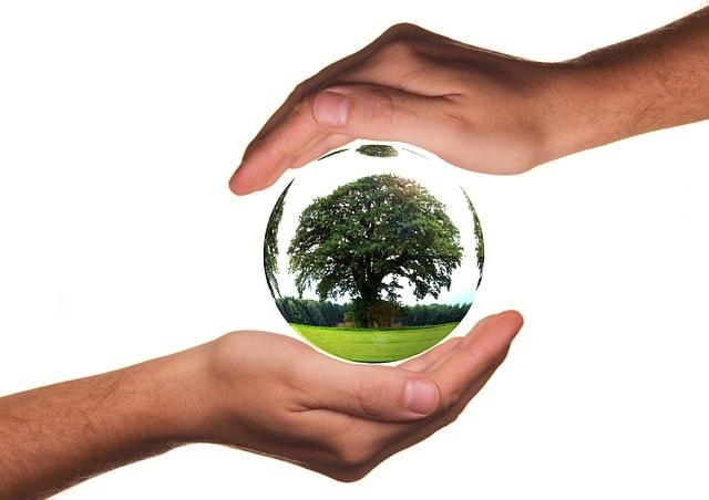 La Responsabilidad Social Corporativa y los productos agrícolas