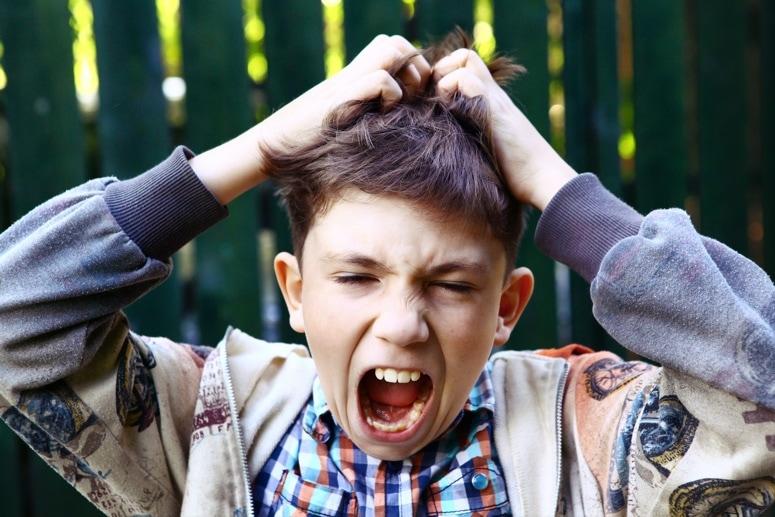Cómo prevenir y combatir los piojos de tus hijos