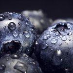 La primavera es época de arándanos azules ¿conoces todos sus beneficios?