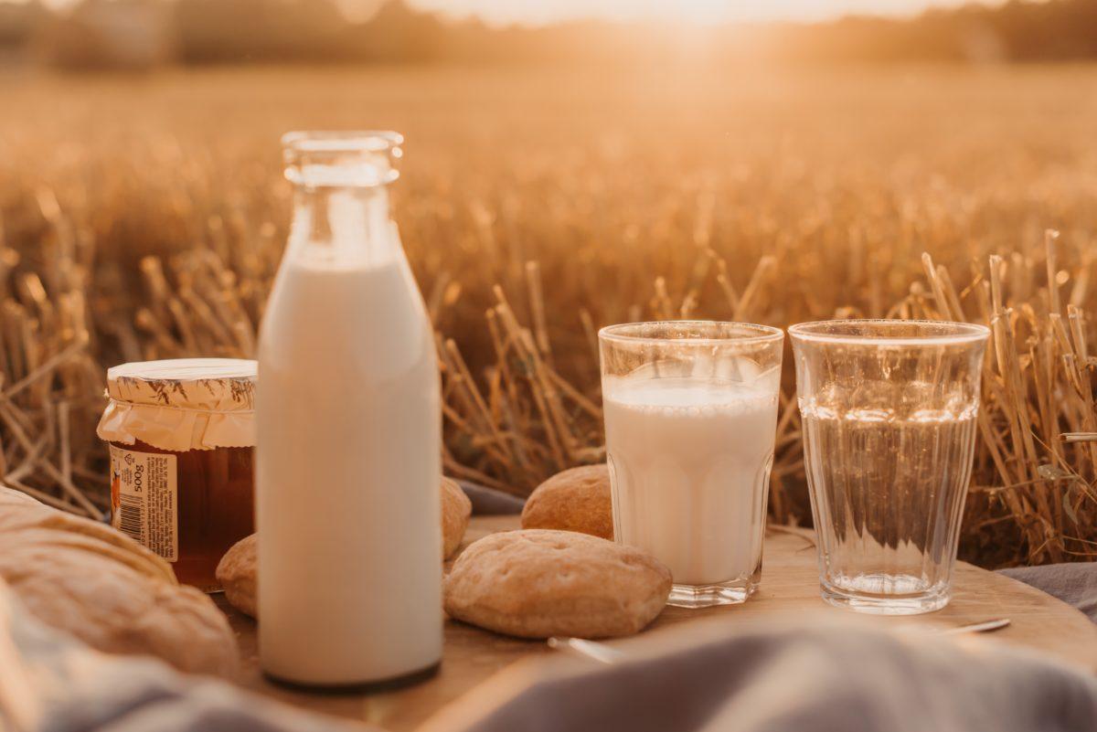 ¿A qué hora del día es más recomendable tomar leche?