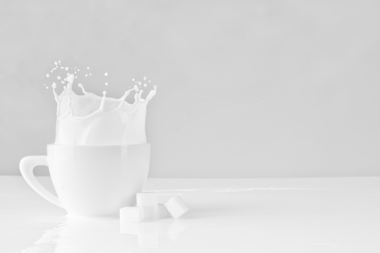 La leche produce intolerancia y otros falsos mitos a desterrar, ¡sí a la leche!