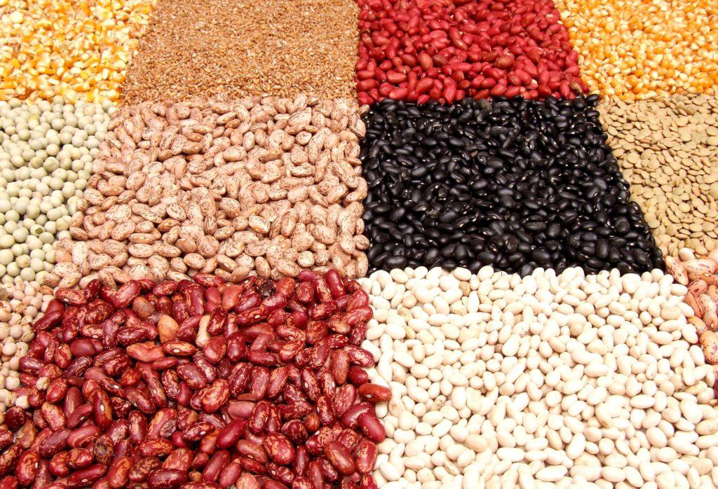 por qué celebramos día mundial de las legumbres