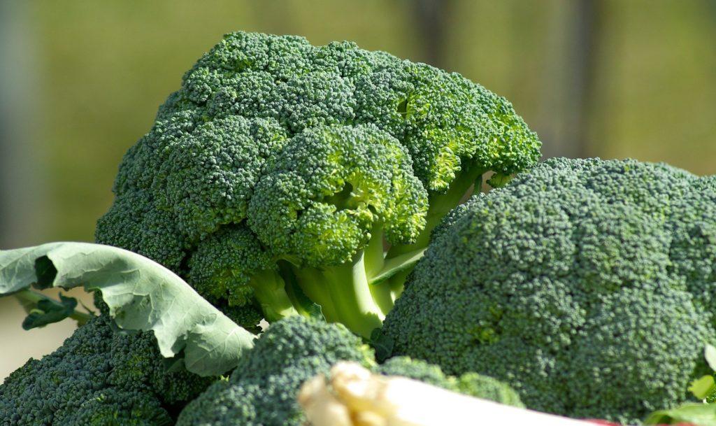 alimentos naturales brocoli