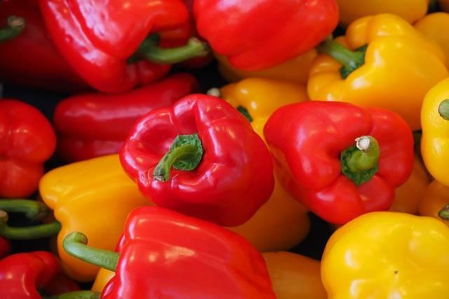 calendario frutas y verduras agosto y septiembre