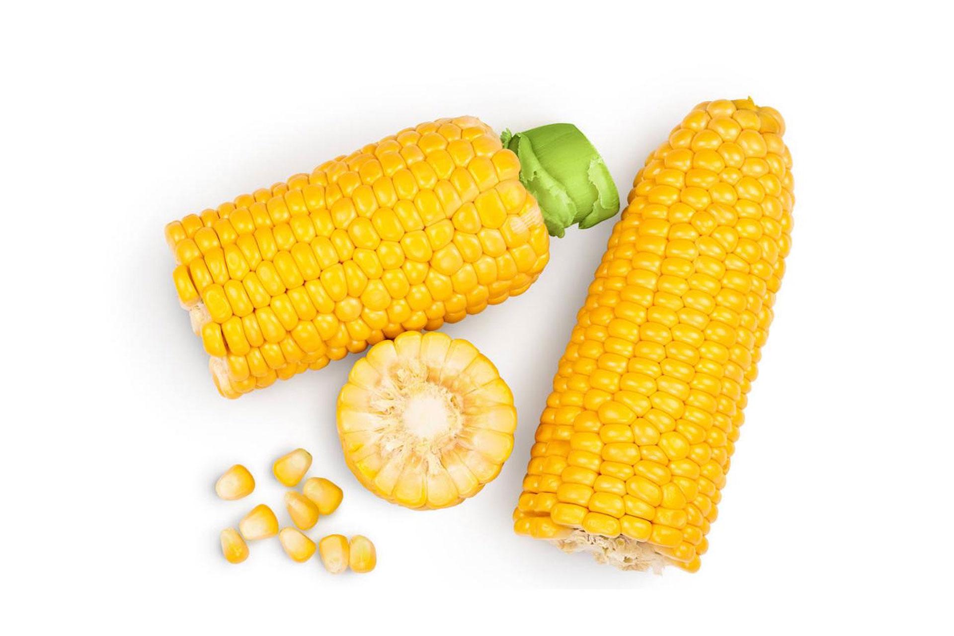 La harina de maíz y sus diferentes usos en la cocina